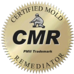 Certified Mold Remediation Restored Air Disaster Solutions