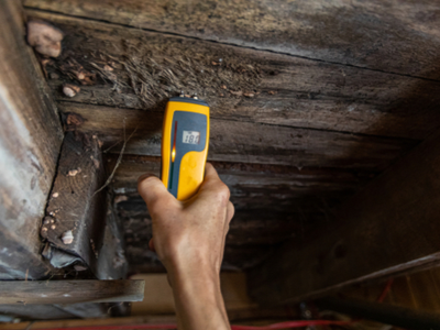 Residential Mold Inspection & Commercial Mold Testing Charleston