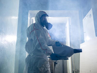 Mold Removal Effort On Residential Property
